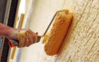 Технология и секреты покраски фасадного короеда